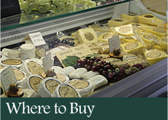 Where to Buy Dunlop Cheeses